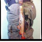 Ножны в форме рыбы 22